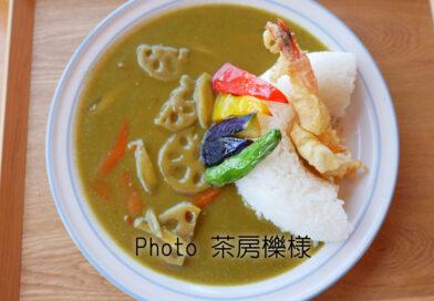 彩り野菜の和風グリーン天ケ瀬ダムカレー